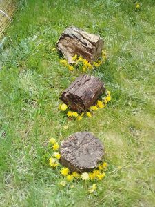 Roots And Renewal Conference 2020 Gallery - Land Art 1