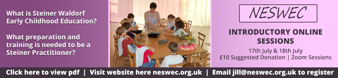 NESWEC Introductory Online Sessions Information PDF